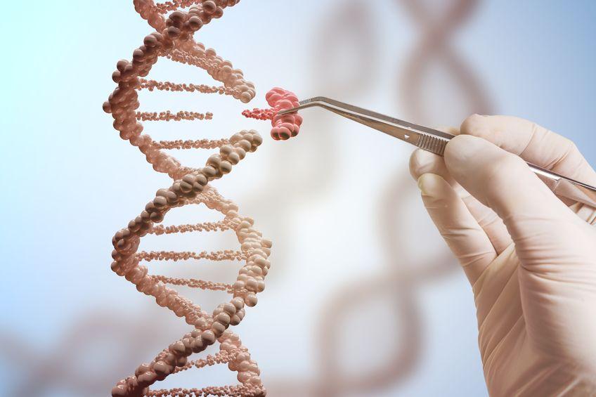 Учёные: уровень счастья заложен в генах