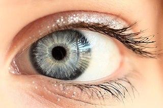 <center><b>Жемчуг в глазах</center></b>