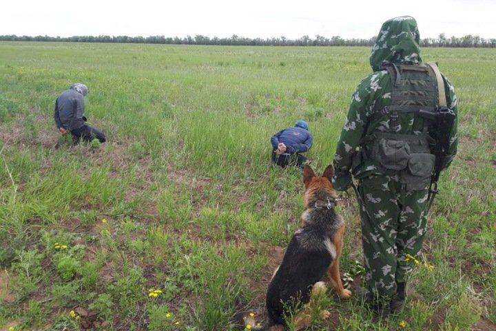У киргизов не получилось обмануть пограничников