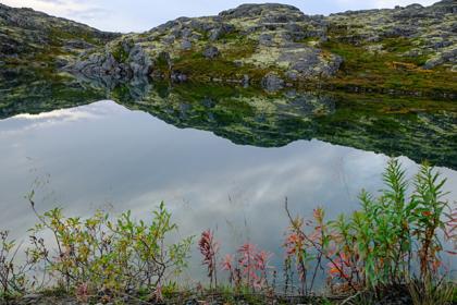 Заполярный полуостров признали одним из красивейших в стране