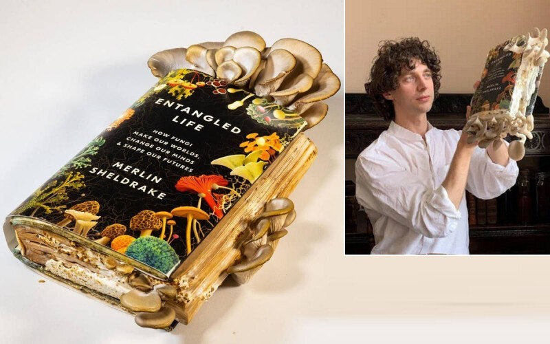Британский ученый вырастил грибы на книге про грибы и съел их