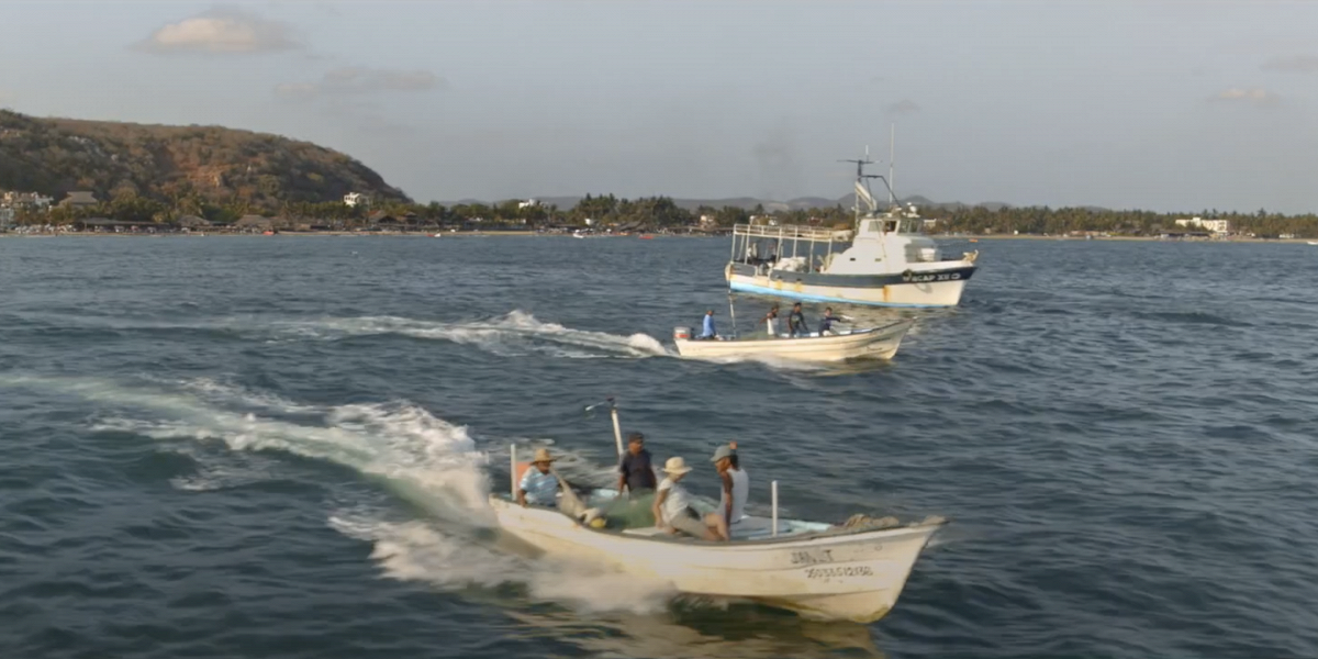 В Мексике провели соревнования по ловле мусора