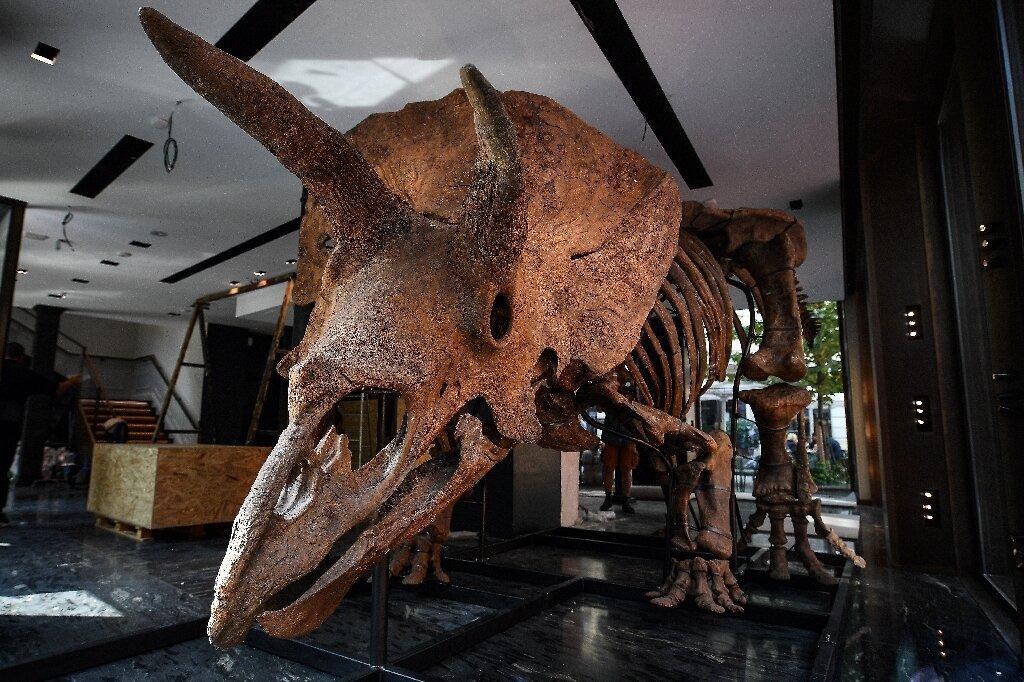 В США с молотка продадут динозавра